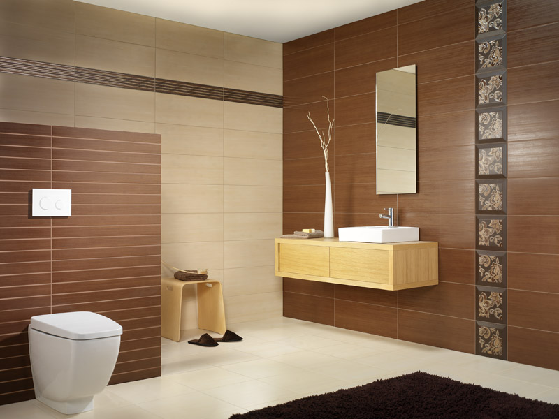 Silk 25x70 41x41 for Salle de bain marron beige